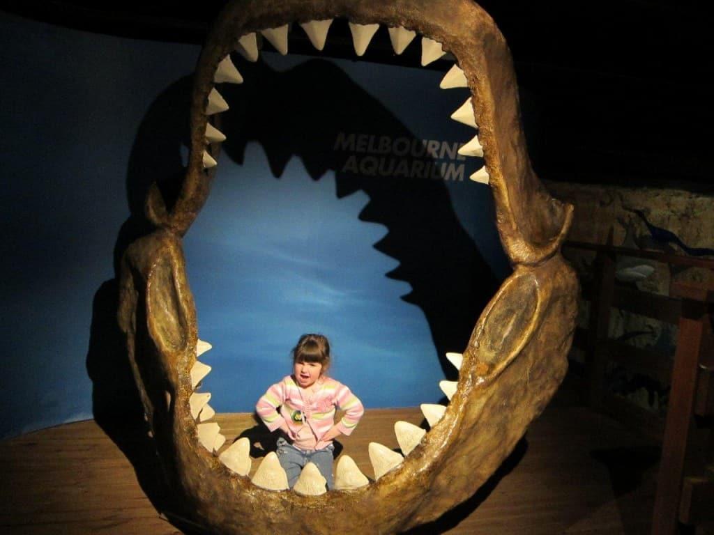 Melbourne Aquarium shark teeth