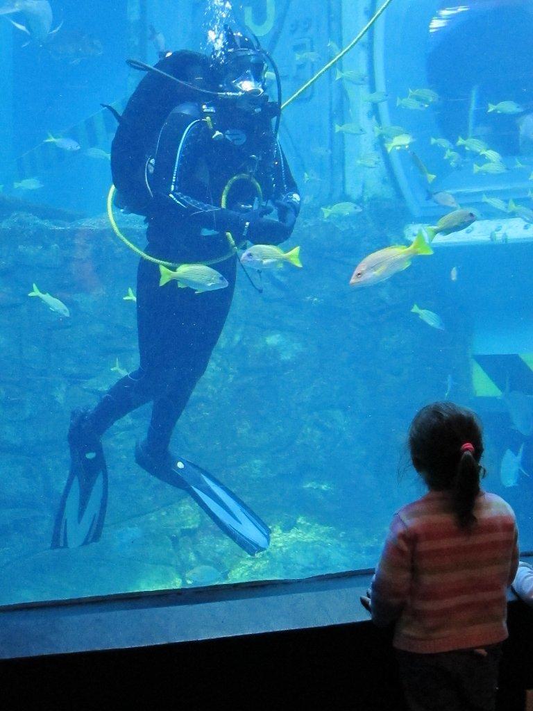 Melbourne Aquarium speaker