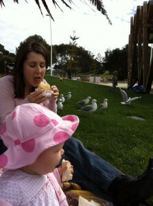 picnic with seagulls