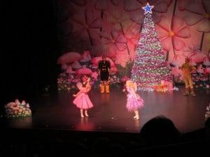 Princess Theatre Launceston, The Fairies