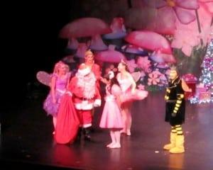 Princess Theatre Launceston