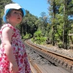 West Coast Wilderness Railway, rack and pinion system,