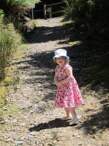 West Coast Wilderness Railway, walk