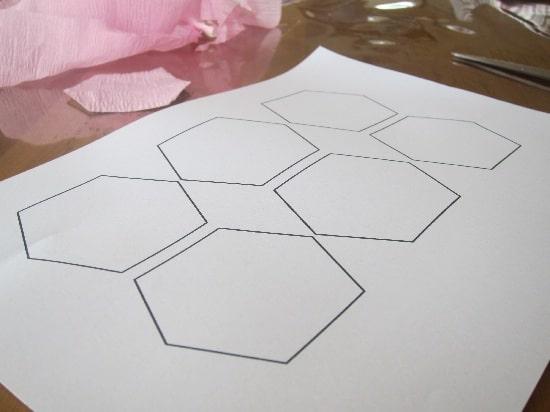 Hexagonal Wall Art shape