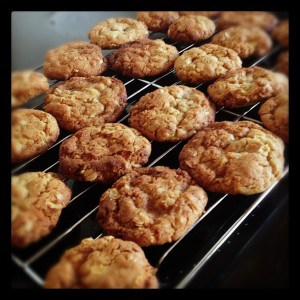 Spiced oat cookies